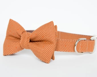 Bowtie Fall Dog Collar - Autumn Orange Herringbone