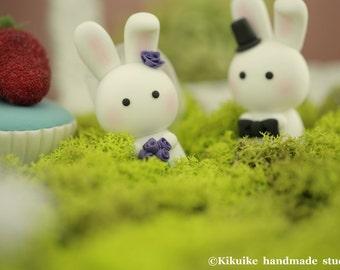 rabbit Wedding Cake Topper-love rabbits and bunny---k934