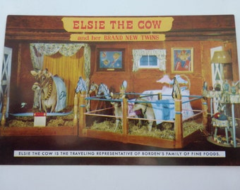 Vintage Postcard  Elsie the Cow and her Brand New Twins 1957
