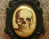 Halloween Cool Vintage Skull set in  a Baroque setting Necklace  40x30