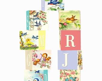 ABC Block Set Wooden Blocks 1 3/4  Inches Nine Block Set Vintage Bird Theme
