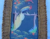 Bird Feather Picture Mexico Wicker Basket Hand Painted Serving Tray