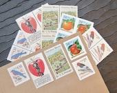 Orchard .. UNused Vintage Postage Stamps  .. post 5 letters