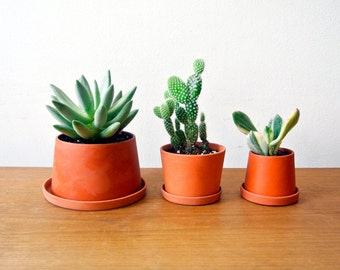 Terracotta mini planters - Set of 3