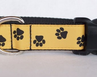 Black and Gold Paws Dog Collar, In M, L, XL