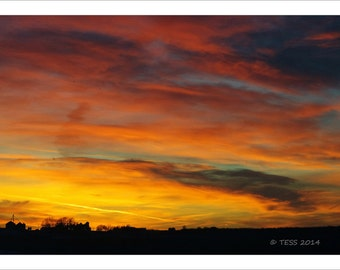 Sunset In Iowa Photography Print  -   Photography Print  - Botanical - Sunset Photo -  Nature Photography