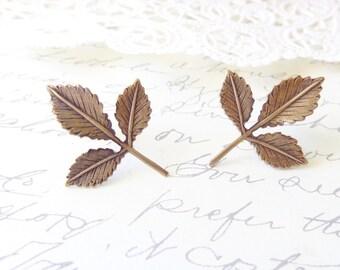 Ox Brass Leaf Spray Earrings - Leaf Earrings - Post Earrings - Woodland Earrings - Nature - Golden Leaf Earrings