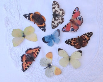 Hand cut silk butterfly hair clips - British Butterfly Collection