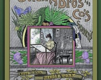 "1889 Victorian Decor Needlework  ""The Paradise"" Gilded Age Dracula Vampire"