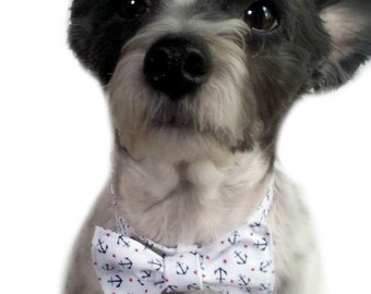 Anchors Aweigh Dog Collar with Bow Tie Size XS through Large by Doogie Couture Pet Boutique
