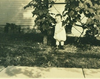 Adorable Toddler Boy in Baggy Diaper Pants Standing Under Trees Outside House 1920s Antique Vintage Black and White Photo Photograph