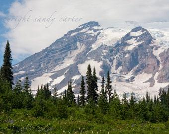Mt. Rainer - A Fine Art Photograph