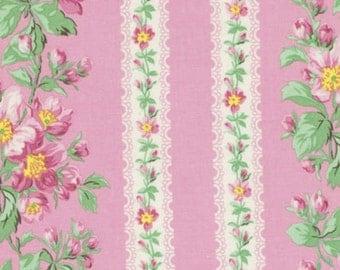 Snapshot Blooming Border Stripe Verna Mosquera  Cotton Fabric PWVM115blush