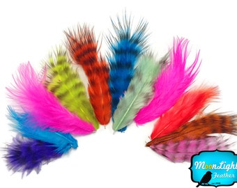 Rooster Feathers,1 Pack - COLORFUL MIX Grizzly Rooster Fluff Wholesale Feathers 0.20 oz. (bulk) : 3447