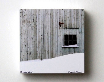 Rustic Blue Barn, White Snow, Blizzard, Winter, Fine Art Photography, 5X5 Wood Panel, Small Wall Art, Ready to Hang