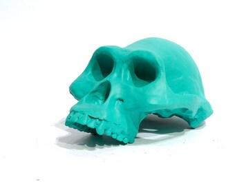 Lucy chalkboard skull
