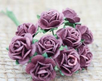 Enchanted  Passion  Series  - Miniature Roses-Plum