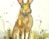 Spring Hare Watercolor Illustration Print by Maure Bausch