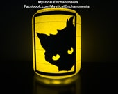 Black Cat Lantern Black Cat Series