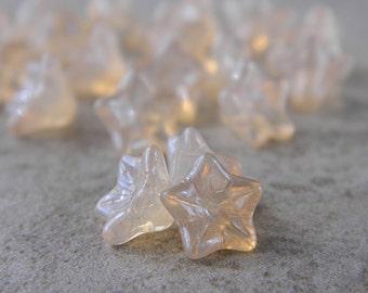 Champagne flower glass beads, Czech glass 5-petal trumpet flower beads, 8X5mm, Opal glass & Champagne luster (20pcs) NEW