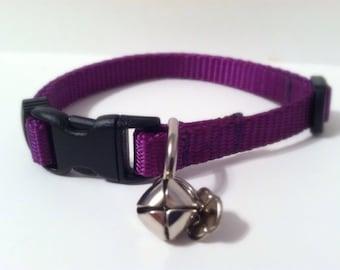 Cat Collar in Basic Purple