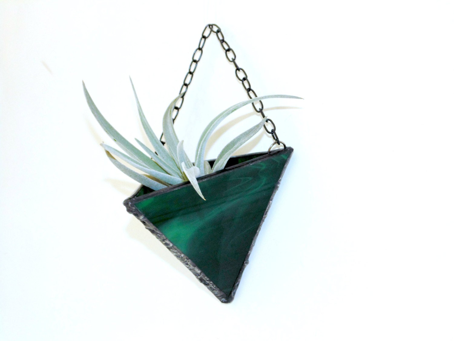 Air Plant Wall Vase Hanging Holder Planter Wispy Green Stained