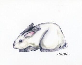 White Rabbit by Terri Nelson