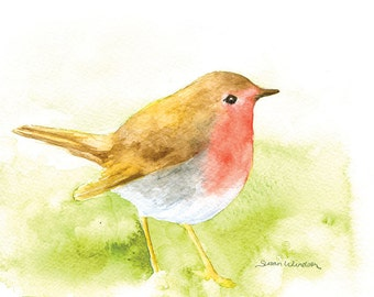 Robin Watercolor Painting - 7 x 5 - Giclee Print - Bird Painting