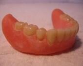 Vintage Authentic Dentures