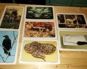 Flash Cards Vintage Set of 7 Flash Cards of Wild Animals Snake, Mice, Fish, Squirrel, Bird, Deer and Skunk homeschool preschool scrapbooking