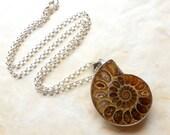 Fossilized Ammonite / Natural Nautical Jewelry / Ammonite Fossil Pendant / Cephalopod / Geek Gift