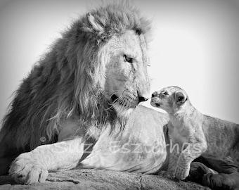 SAFARI BABY ANIMAL Photography, Set of 4 Black and White Photos, Elephant, Lion, Cheetah, Giraffe, Animal Photography, Baby Shower, African