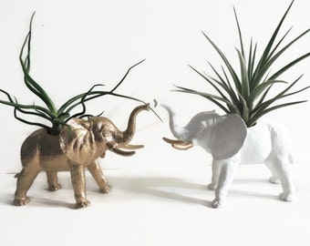 Set of two kissing elephant planters with air plants. One gold and one white with gold accents.