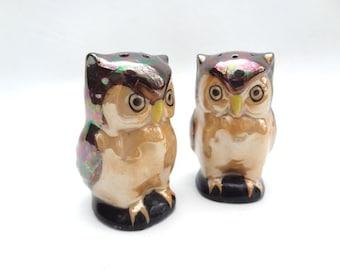 Iridescent Owl Salt and Pepper Shakers Vintage Woodland Decor