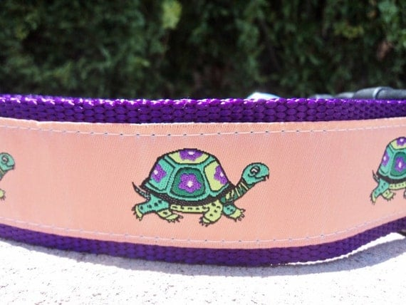 "Sale Large Dog Collar 1.5"" wide side release buckle adjustable Turtle Tails - upgrade to martingale, incl dogs neck measurement"