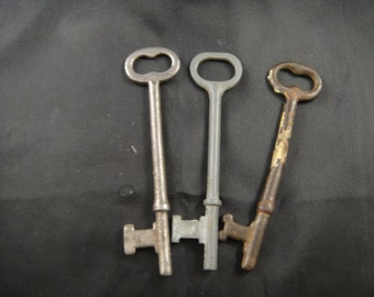 Skeleton Keys Set of Three