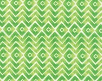 Fleurologie - Zig Zag Chevron in Meadow by StephanieRyan For Moda Fabrics