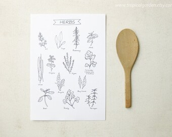 Herbs Kitchen Art - 8x11 Ink Illustration / Culinary Art Print - Kitchen Decor