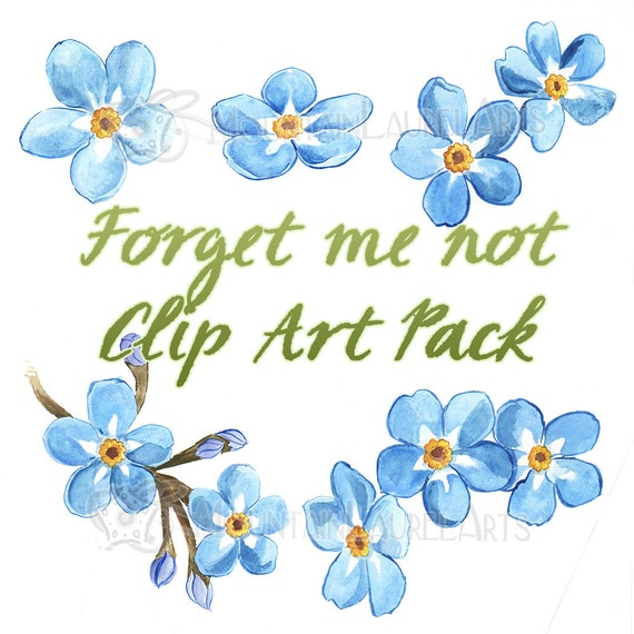 Blue Flower Clipart Forget Me Not Watercolor Painting