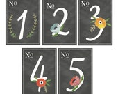 Floral Chalkboard Table Numbers 1-10  5x7 (More Numbers Available)
