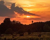 Country Photography Sunset  Photography Landscape photography Nature Photography  Fine Art Photography Print