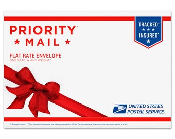 Priority Mail Delivery