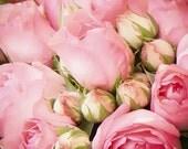 Flower photo - La vie en rose - French roses - Paris Market - Nature Photo - Shabby Chic - Vintage black and white or pink photo - 5x5