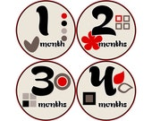 Baby Month Stickers, Girls Monthly Baby Stickers, Monthly Stickers, Monthly Bodysuit Stickers, Monthly Milestone Stickers, Kanji (G072)