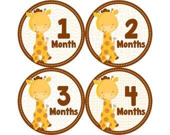 Monthly Baby Stickers, Boys First Year Photo Props, Baby Month Stickers, Baby Announcement, Monthly Photos, Baby Gift, Giraffe (B073)