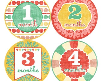 ON SALE Girl Monthly Baby Stickers FREE Just Born Bodysuit Sticker Baby Girl Month Milestone Sticker Baby Shower Gift Baby Photo Prop (009G)