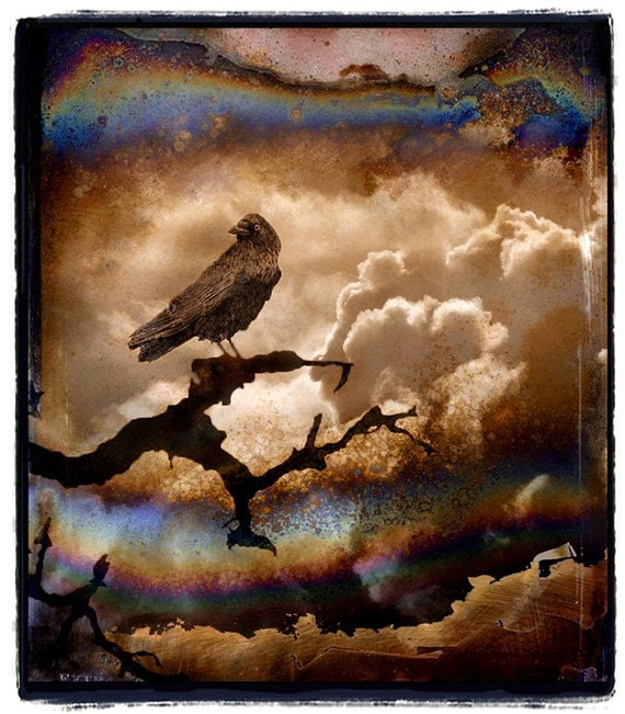Crow, nature photography, photo collage, Bird, Raven, Stormy, Clouds, Sepia, Brown, gothic, Fine Art Print 8x10