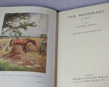 Vintage 1940's The Mandrake A Pony by Kathleen Herald, 1949, first edition book, UK English author, horse book, horse illustrations, fiction