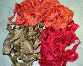 Autumn Begins Hand Dyed Ribbon