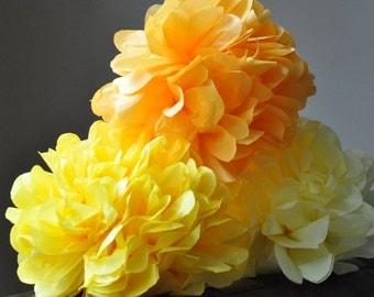 6 Tissue Poms {pocket full of sunshine}